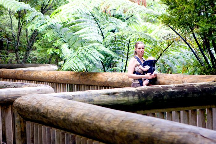 blog_2010_NZ_1-09