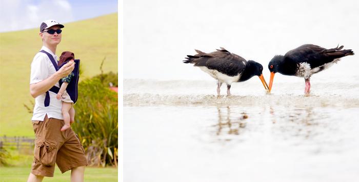 blog_2010_NZ_1-11